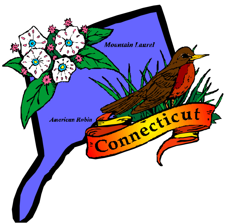 mystery books that take place in connecticut the cozy mystery