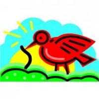 bird111111111ohhk;rgk;kd